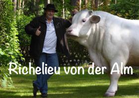 Die Kuh deines Nachbar steht allein Im Garten … dann schenke doch deinen Nacharn einen Deko Bullen ...