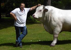 Foto 3 Die Kuh deines Nachbar steht allein Im Garten … dann schenke doch deinen Nacharn einen Deko Bullen ...