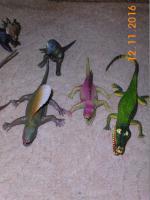 Foto 5 Dinos und sonstige Tiere