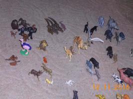 Foto 7 Dinos und sonstige Tiere