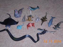 Foto 8 Dinos und sonstige Tiere