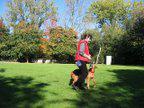 Foto 2 Dogdance für Jederhund - mit handicap - graue Schnauze - oder gesund und Hundfreunde mit handicap