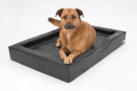 DoggyBed Hundekorb Visko Compact Style 120x80x16cm schwarz