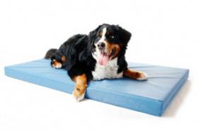 DoggyBed XXL-Hundematte Basic Style 140x100x9cm blaugrau