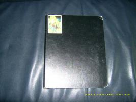 Dragonball Karten