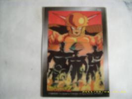 Foto 16 Dragonball Karten