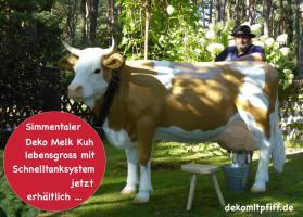 Du kannst dieses Deko Kuh lebensgross - Modell als Melkkuh mieten ...