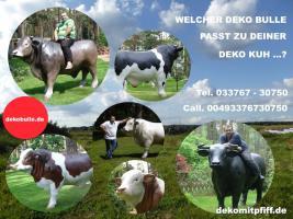 Foto 3 Du kannst dieses Deko Kuh lebensgross - Modell als Melkkuh mieten ...