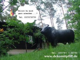 Foto 4 Du hast ein Deko Pferd im Garten und keinen Deko Bullen ? Ja dann ändere es einfach ...
