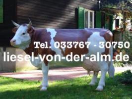 Foto 4 Du hast eine Messeveranstaltung und möchtest ne Deko Kuh oder ein Deko Pferd auf deiner Ausstellungsfläche haben ...