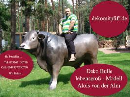 Foto 4 Du hast ne Deko kuh im Garten und warum noch nicht einen Deko Bullen …?