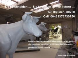 Du hast noch keine Holstein Deko Kuh ? im Garten… ?