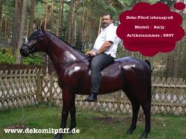Foto 5 Du hast noch keinen Deko Bullen im Garten ok. dann bestellen oder möchtestz Du eine Deko kuh mit Deko Kalb ...