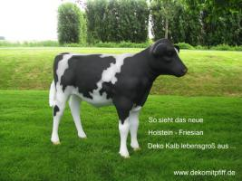 Foto 2 Du hast noch keinen Deko Kuh - 8905