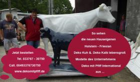 Foto 3 Du hast noch nicht das neue Holstein Deko Kalb und auch nicht ne Holstein - Friesian Deko Kuh … ja dann bestellen ...