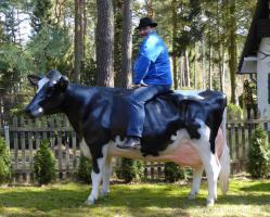 Foto 2 Du hast nocht keine Deko Kuh im Garten wie wäre es den mit einer Holstein - Friesian Deko Kuh  - neues Modell ...