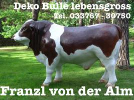 Foto 2 Du möchtest einen Deko Bullen lebengross ???