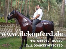 Du möchtest ein Deko Pferd oder Deko Bullen gern erwerben…? www.dekomitpfiff.de