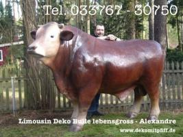 Foto 2 Du möchtest ein Deko Pferd oder Deko Bullen gern erwerben…? www.dekomitpfiff.de