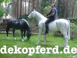 Foto 6 Du möchtest auch ein Deko Pferd und ne Deko Kuh als Blickfang für Deine Gartenparty… ja warum nicht ...