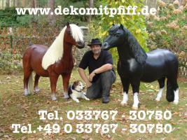 Du möchtest ein Deko Pferd / oder besser gesagt ein Deko Pony lebensgross dann www.dekomitpfiff.de mal anklicken