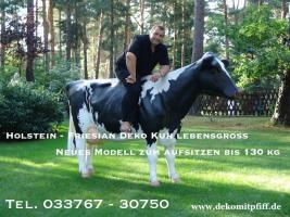 Foto 2 Du möchtest auch eine Holstein - Deko Kuh … ? ja dann ran ans telefon ...