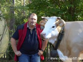 Foto 4 Du möchtest ein Red Deko Kuh Holstein Friesian mit oder ohne Horn ? oder vielleicht  …?
