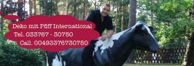 Foto 5 Du möchtest ne Deko Kuh für Deine  Gattin … www.holsteinkuh.de