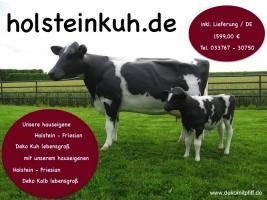 Foto 3 Du möchtest ne Holstein Friesian Deko Kuh erwerben …? 9122