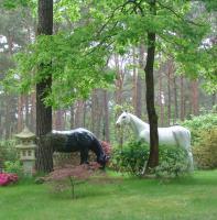 Foto 2 Du willst ein Deko Pferd… ok.