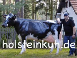 EINE HOLSTEIN - FRIESIAN DEKO KUH --- www.dekomitpfiff.de