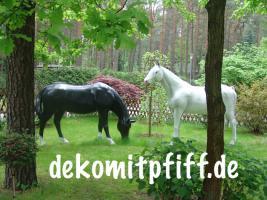 Foto 2 EINE HOLSTEIN - FRIESIAN DEKO KUH --- www.dekomitpfiff.de