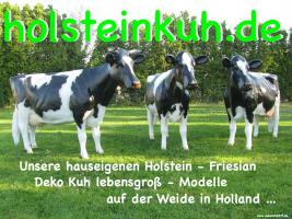 ES WIRD ZEIT FÜR NE DEKO KUH - Holstein -