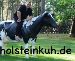 Foto 2 ES WIRD ZEIT FÜR NE DEKO KUH - Holstein -