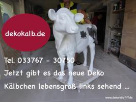 Foto 6 ES WIRD ZEIT FÜR NE DEKO KUH - Holstein -