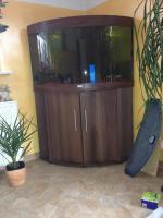 Foto 2 Eckaquarium von der Firma JUWEL zu verkaufen. 190 Liter!!!