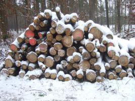 Eichenstammholz 1 oder 2 Meter
