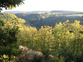 Foto 2 Eifel-Wandern? 2-Bäche-Pfad,  2***Fewo frei.