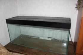 Ein Aqarium günstig ( L120cm. H 55cm. B 40 cm ) mit Deckel in gutem Zuschtand an selbstabholer  abzugeben