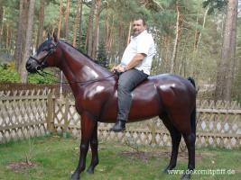 Foto 4 Ein Deko Pferd vor Ihrer Fenster im Garten … www.dekopferd.de