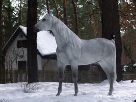 Foto 6 Ein Deko Pferd vor Ihrer Fenster im Garten … www.dekopferd.de