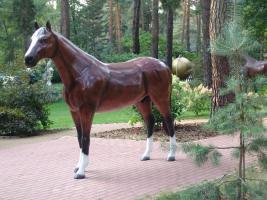 Foto 4 Ein Deko Pferd oder ne Gigant Deko Kuh ?