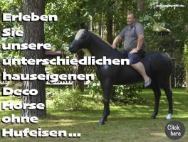 Ein Deko Pferd ohne Hufeisen ...