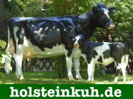 Foto 4 Eine Deko Kuh als Hochzeitsgeschenk…. ja warum nicht ...