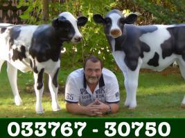 Foto 7 Eine Deko Kuh als Hochzeitsgeschenk…. ja warum nicht ...