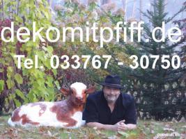 Foto 8 Eine Logo Deko Kuh als Blickfang für deine Eventveranstaltungen oder nöchtest Du eine Deko Kuh ohne Logo ...