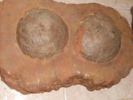 Foto 2 Einmalige Gelegenheit! Fossilien, Edelsteine, Edelsteinschmuck-Sammlung aus Geschäftsaufgabe