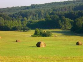 Foto 4 Erholung in Ungarn, Nationalpark