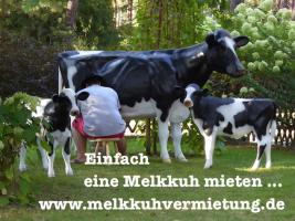 Foto 2 Event geplant und dazu ein Deko Pferd oder ne Deko Melk Kuh lebensgroß mieten …?