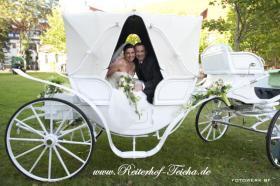 Exclusive Hochzeitskutschen - Kremserfahrten - Kutschfahrten